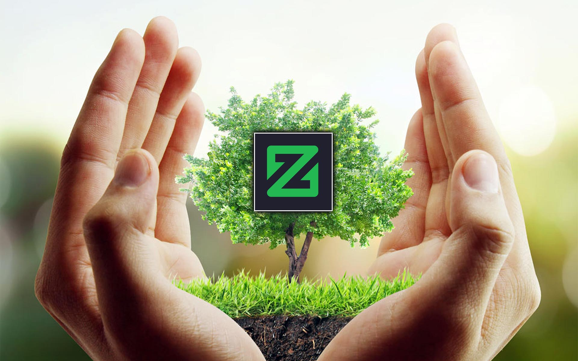 How to get Zcoin for free?